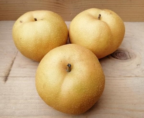 Nam Shu Pear side